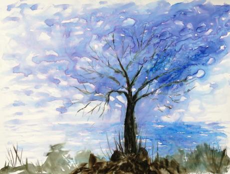 """Foggy Wintry Tree on the Prom 11"""" x 8.5"""" - Original: Sold"""
