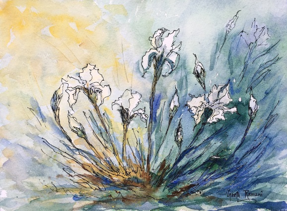 "Laura's White Irises9"" x 12"" - Original $130"