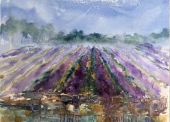 "Lavender Fields Forever8.5"" x 11"" - Original $150"