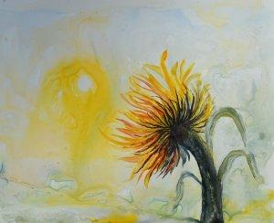 Rohin's Sunflower