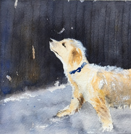 """Rufus and the Seagull10"""" x 7"""" - Original $100"""