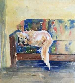 """Rufus, King of the Couch 10"""" x 10"""" – Original - Sold"""