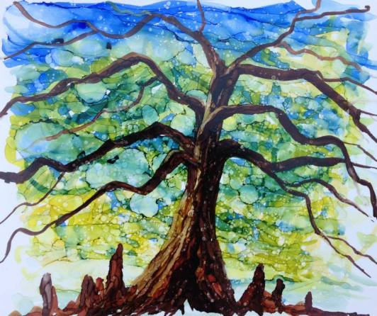 Oak in City Park, Nola