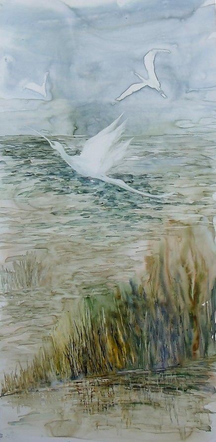 Marsh Birds Sold