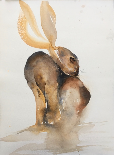 Big Butt Bunny
