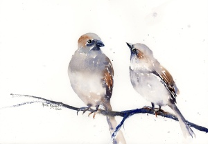 Sparrow Discussion